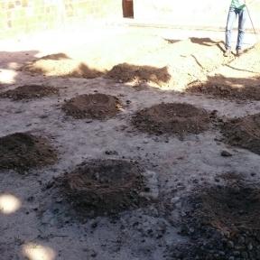 Projeto da UEG Campos Belos leva horta orgânica para lar dos idosos