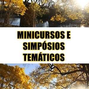 Minicursos