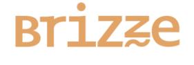 brizzed